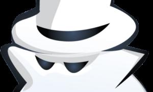Как удалить все данные и загруженные файлы или войти в режим приватного просмотра в браузере?