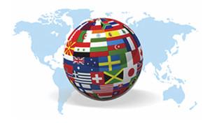 Multi Language Website