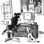 Как вести свой блог анонимно?