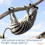 Заработок в Интернете без вложений: как зебра Паша заработала 248 рублей за один месяц