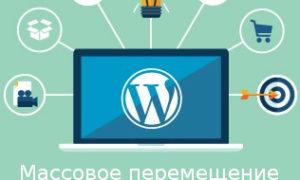 Как использовать рубрики и метки, массовое перемещение постов между ними в WordPress