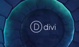 Конструктор лендингов Divi для WordPress: $250 за пожизненную поддержку и обновления. Инструкция по применению.