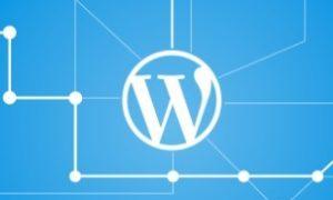 Как изменить тему на сайте WordPress: 8 вещей, которые стоит сделать ДО ТОГО…